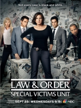 <h5>Law & Order Special Victims Unit</h5><p>																																																																				</p>