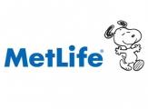 <h5>MetLife</h5><p></p>