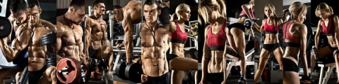 <h5>Fitness Models & Body Builders</h5><p>																																																																																																																							</p>