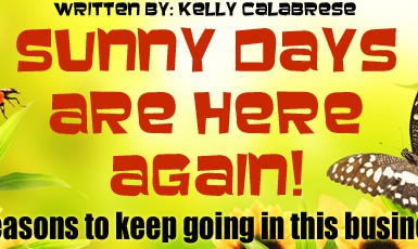 sunnydays copy